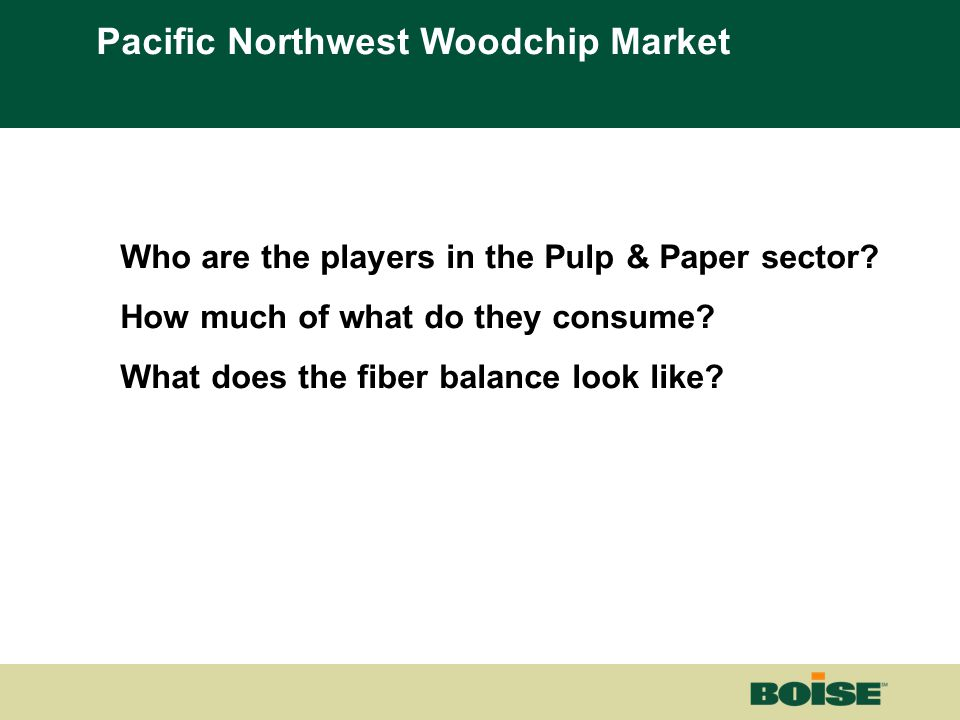 Boise | Building a New BoiseNet Page 3 Who are the players in the Pulp & Paper sector? How much of what do they consume? What does the fiber balance l