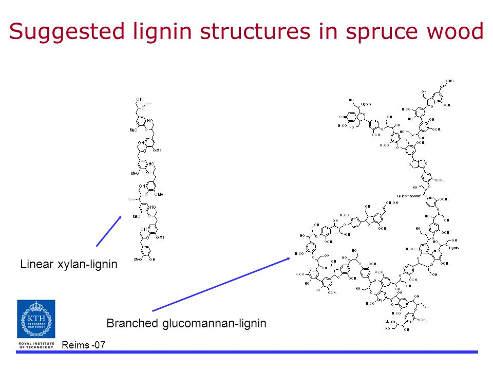 Reims -07 Suggested lignin structures in spruce wood Linear xylan-lignin Branched glucomannan-lignin