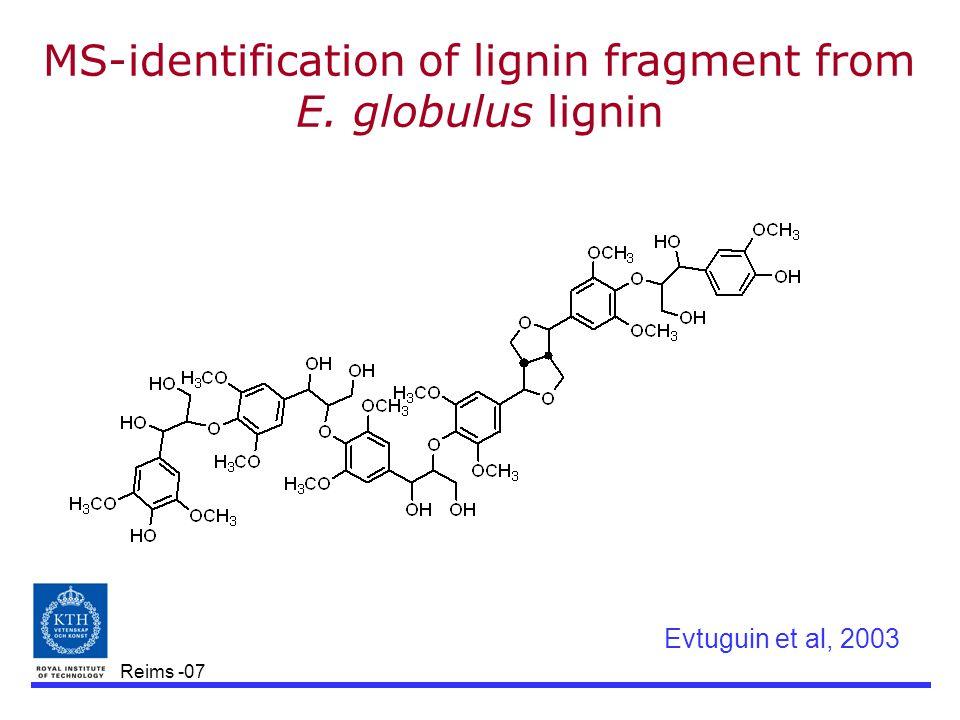 Reims -07 MS-identification of lignin fragment from E. globulus lignin Evtuguin et al, 2003