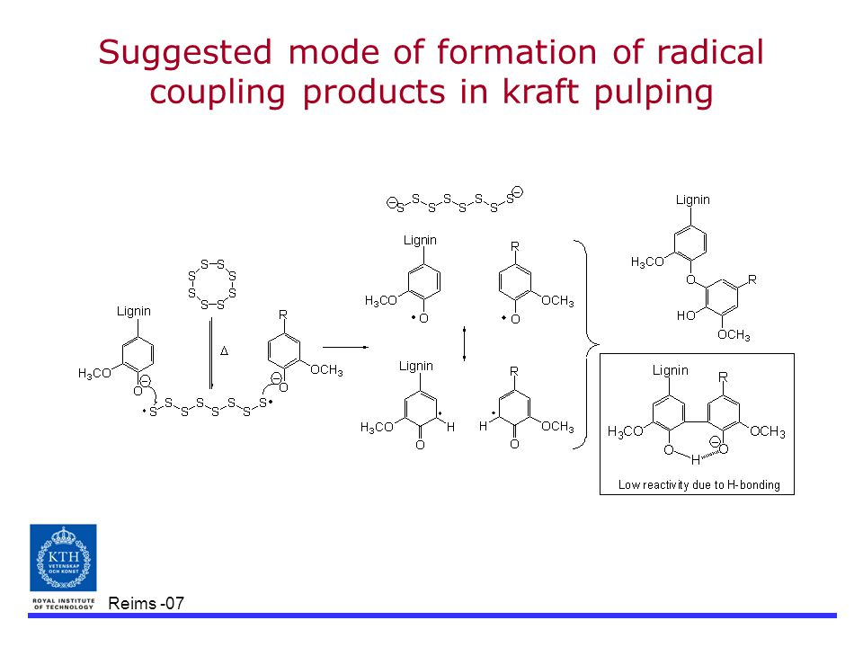 Reims -07 Suggested mode of formation of radical coupling products in kraft pulping