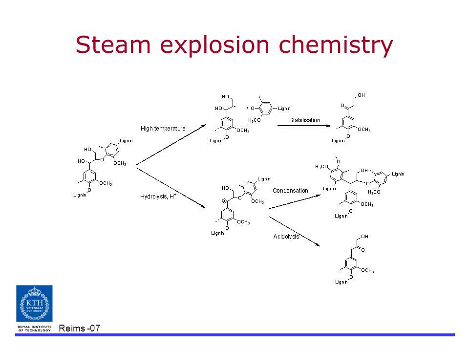 Reims -07 Steam explosion chemistry