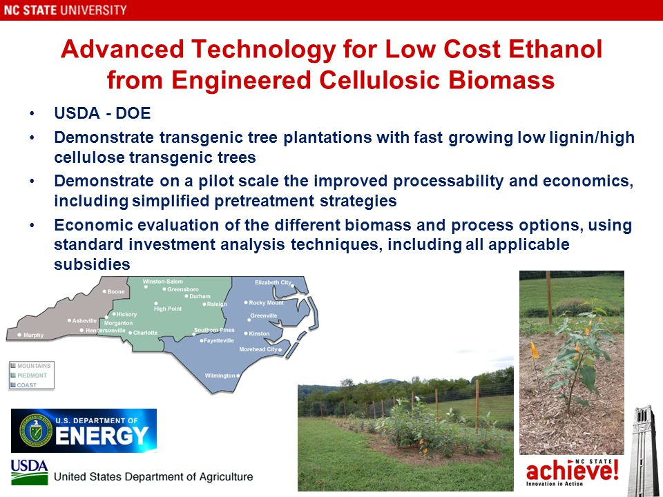 Advanced Technology for Low Cost Ethanol from Engineered Cellulosic Biomass USDA - DOE Demonstrate transgenic tree plantations with fast growing low lignin/high cellulose transgenic trees Demonstrate on a pilot scale the improved processability and economics, including simplified pretreatment strategies Economic evaluation of the different biomass and process options, using standard investment analysis techniques, including all applicable subsidies