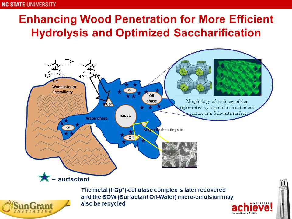 Enhancing Wood Penetration for More Efficient Hydrolysis and Optimized Saccharification The metal (IrCp*)-cellulase complex is later recovered and the SOW (Surfactant Oil-Water) micro-emulsion may also be recycled Morphology of a microemulsion represented by a random bicontinuous structure or a Schwartz surface.