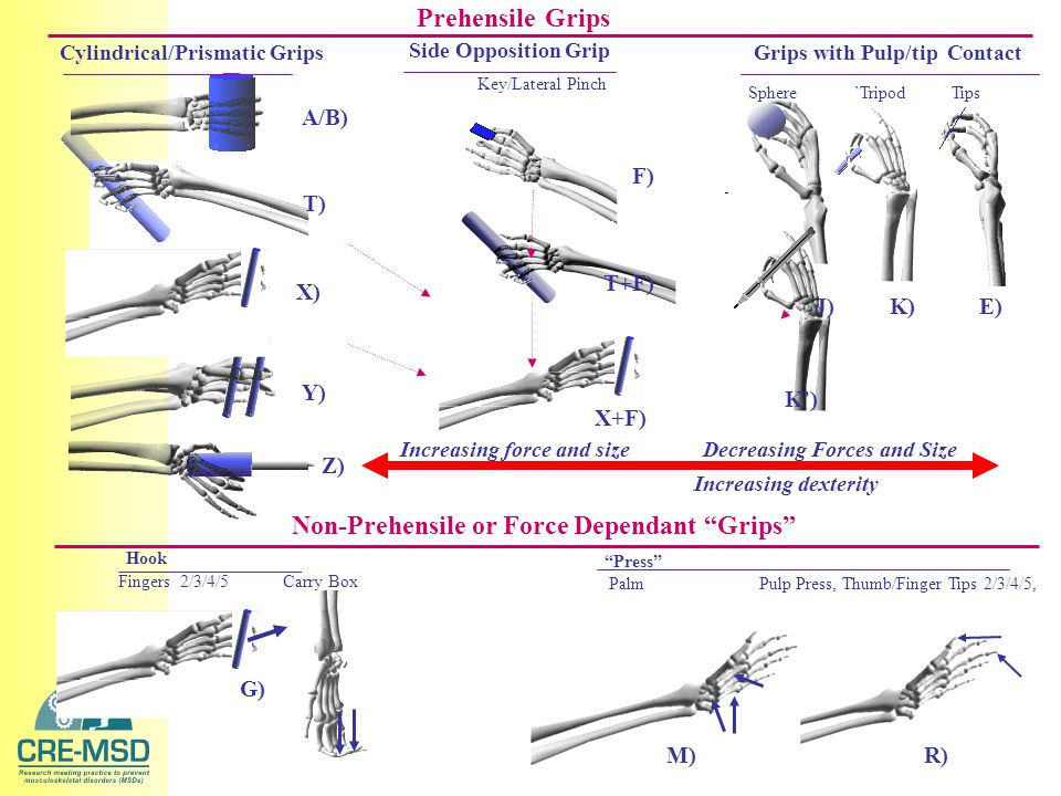 Prehensile Grips Cylindrical/Prismatic Grips Grips with Pulp/tip Contact Non-Prehensile or Force Dependant Grips Hook Press Palm Pulp Press, Thumb/Finger Tips 2/3/4/5, Sphere `Tripod Tips Key/Lateral Pinch Side Opposition Grip A/B) X) T) Y) F) K)J)E) G) R) Z) Increasing force and size Decreasing Forces and Size Increasing dexterity Fingers 2/3/4/5 Carry Box T+F) X+F) K') M)