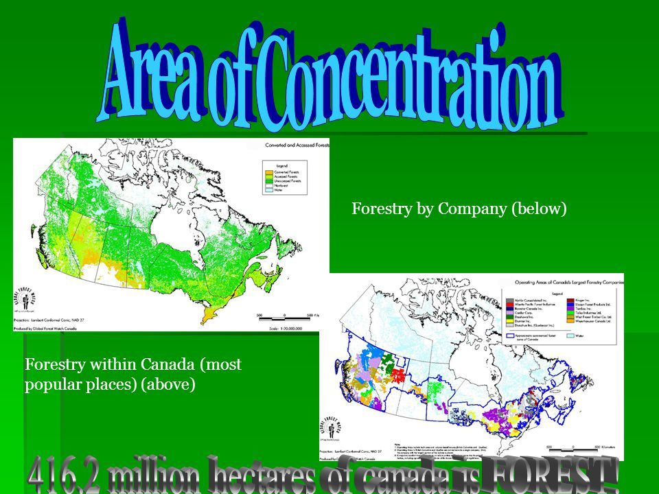 Forest Regions of Canada Forest Region Commercial Forest Non Commercial Forest Non Forested land Boreal49%24%27% Taiga11%34%55% Montane65%6%29% Mixed47%2%61% West Coast 39%7%54% Arctic0%1%99% Prairie4%1%96% What conclusions can we draw about the location and importance of forestry in a diverse Canada?