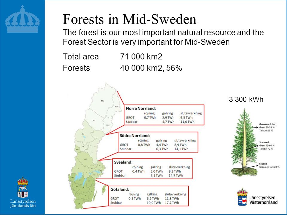 Forests in Mid-Sweden The forest is our most important natural resource and the Forest Sector is very important for Mid-Sweden Total area 71 000 km2 Forests40 000 km2, 56% 3 300 kWh
