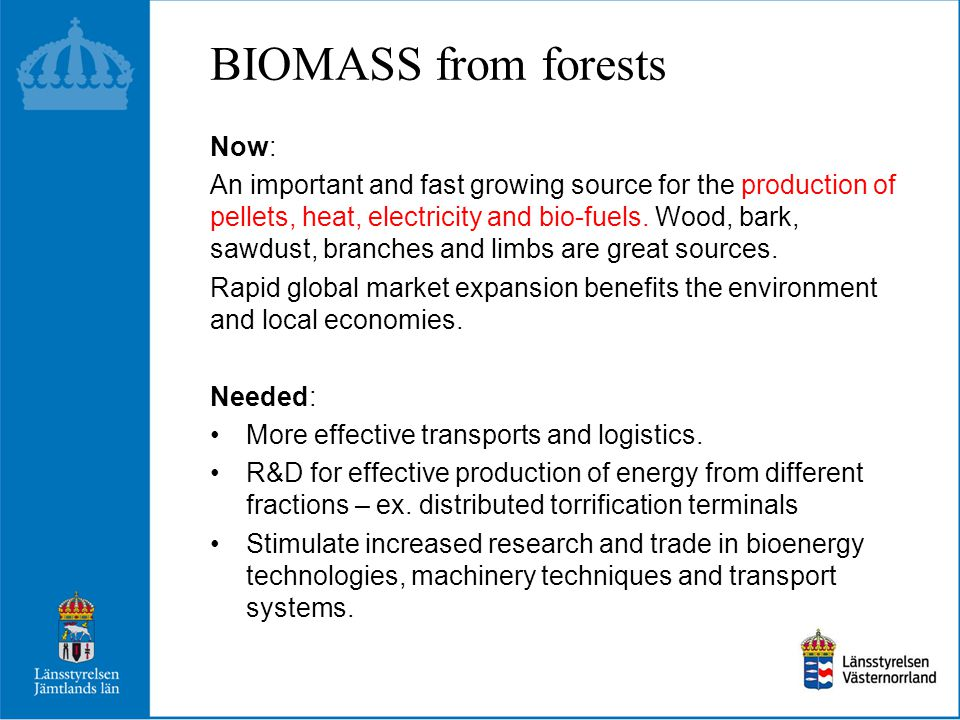 BIOMASS from forests Now: An important and fast growing source for the production of pellets, heat, electricity and bio-fuels.