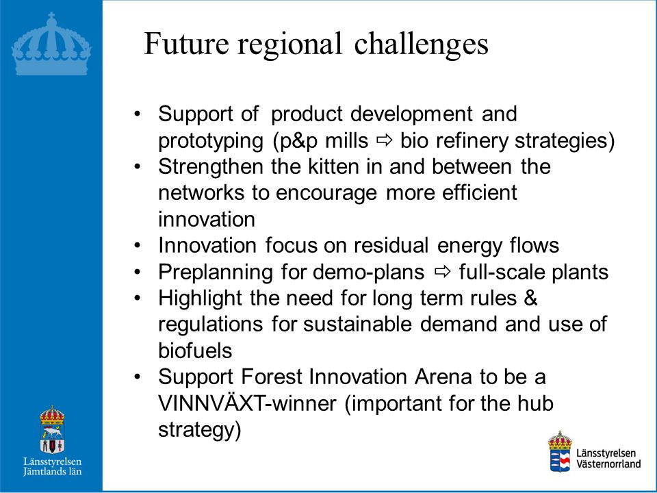 Future regional challenges Support of product development and prototyping (p&p mills  bio refinery strategies) Strengthen the kitten in and between t