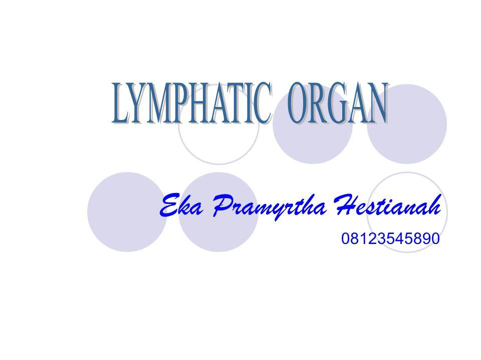 Eka Pramyrtha Hestianah 08123545890