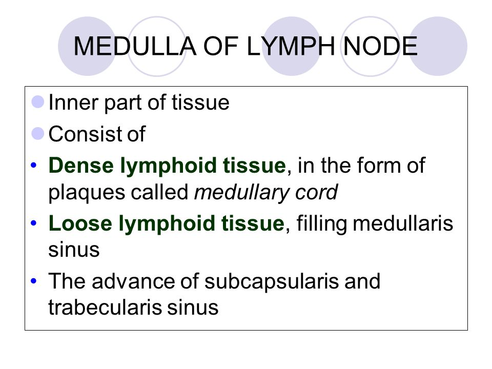 MEDULLA OF LYMPH NODE Inner part of tissue Consist of Dense lymphoid tissue, in the form of plaques called medullary cord Loose lymphoid tissue, filling medullaris sinus The advance of subcapsularis and trabecularis sinus