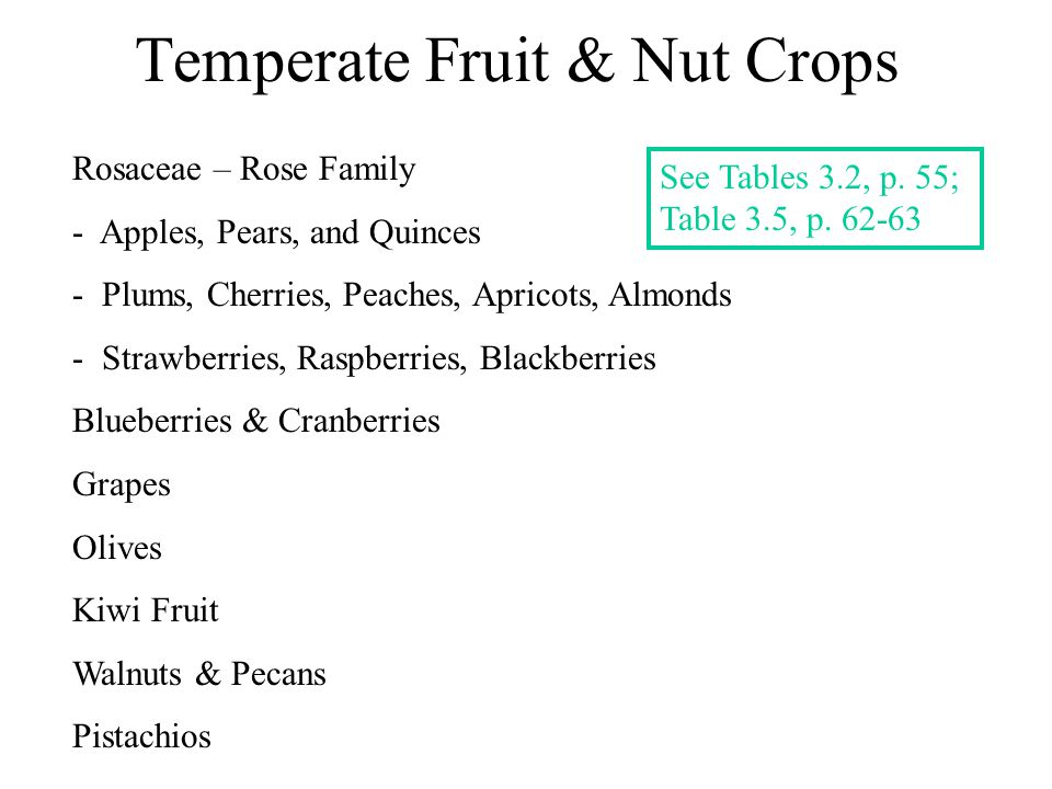 Temperate Fruit & Nut Crops Rosaceae – Rose Family - Apples, Pears, and Quinces - Plums, Cherries, Peaches, Apricots, Almonds - Strawberries, Raspberr