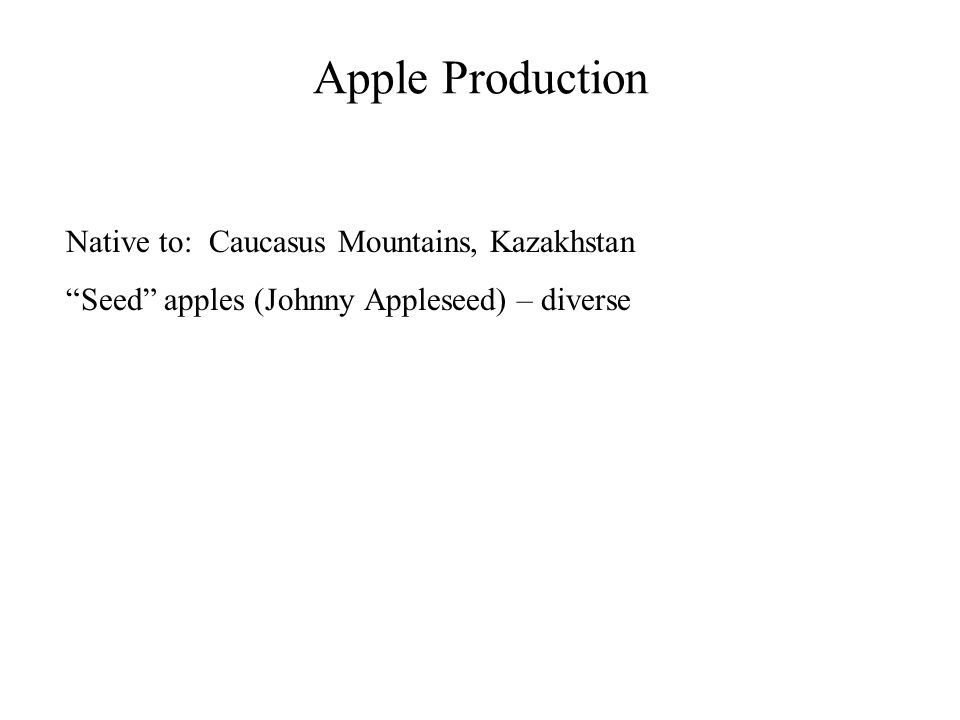 """Apple Production Native to: Caucasus Mountains, Kazakhstan """"Seed"""" apples (Johnny Appleseed) – diverse"""