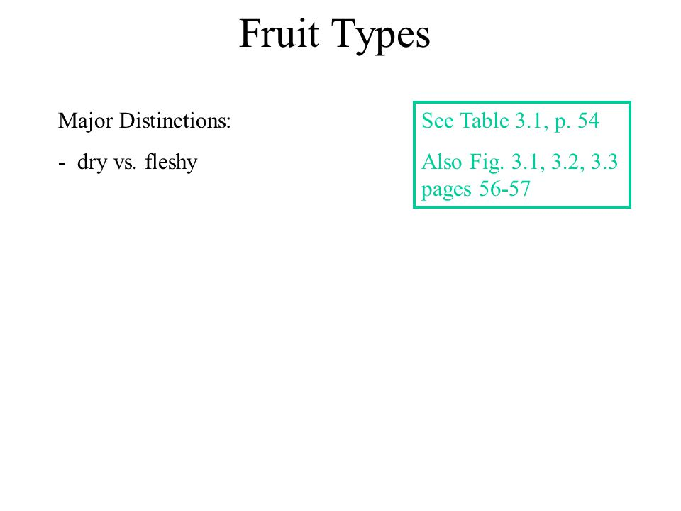 Fruit Types Major Distinctions: - dry vs. fleshy See Table 3.1, p. 54 Also Fig. 3.1, 3.2, 3.3 pages 56-57