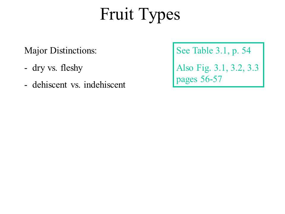 Fruit Types Major Distinctions: - dry vs.fleshy - dehiscent vs.