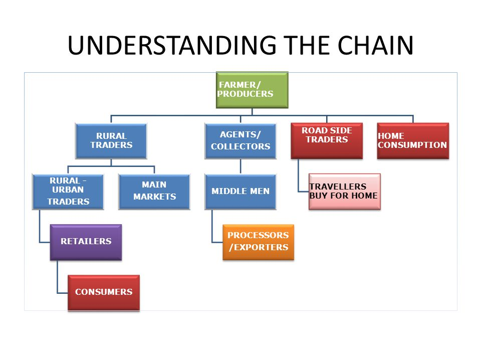 UNDERSTANDING THE CHAIN
