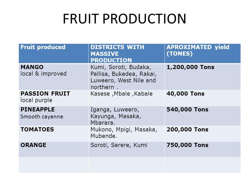 FRUIT PRODUCTION Fruit producedDISTRICTS WITH MASSIVE PRODUCTION APROXIMATED yield (TONES) MANGO local & improved Kumi, Soroti, Budaka, Pallisa, Bukedea, Rakai, Luweero, West Nile and northern.