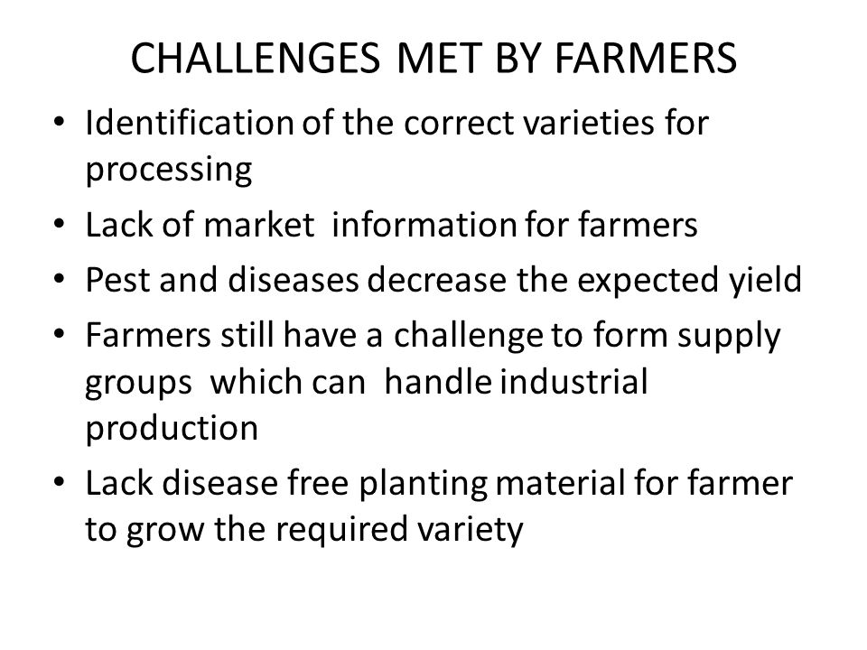CHALLENGES MET BY FARMERS Identification of the correct varieties for processing Lack of market information for farmers Pest and diseases decrease the