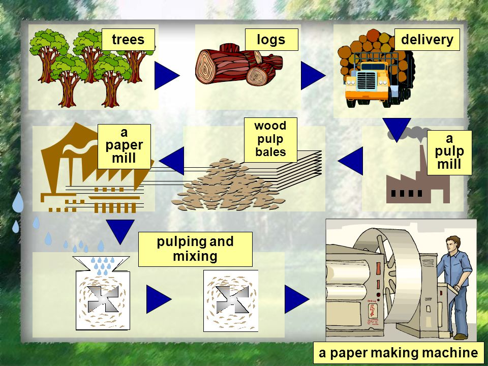 treeslogsdelivery a paper mill wood pulp bales a pulp mill pulping and mixing a paper making machine