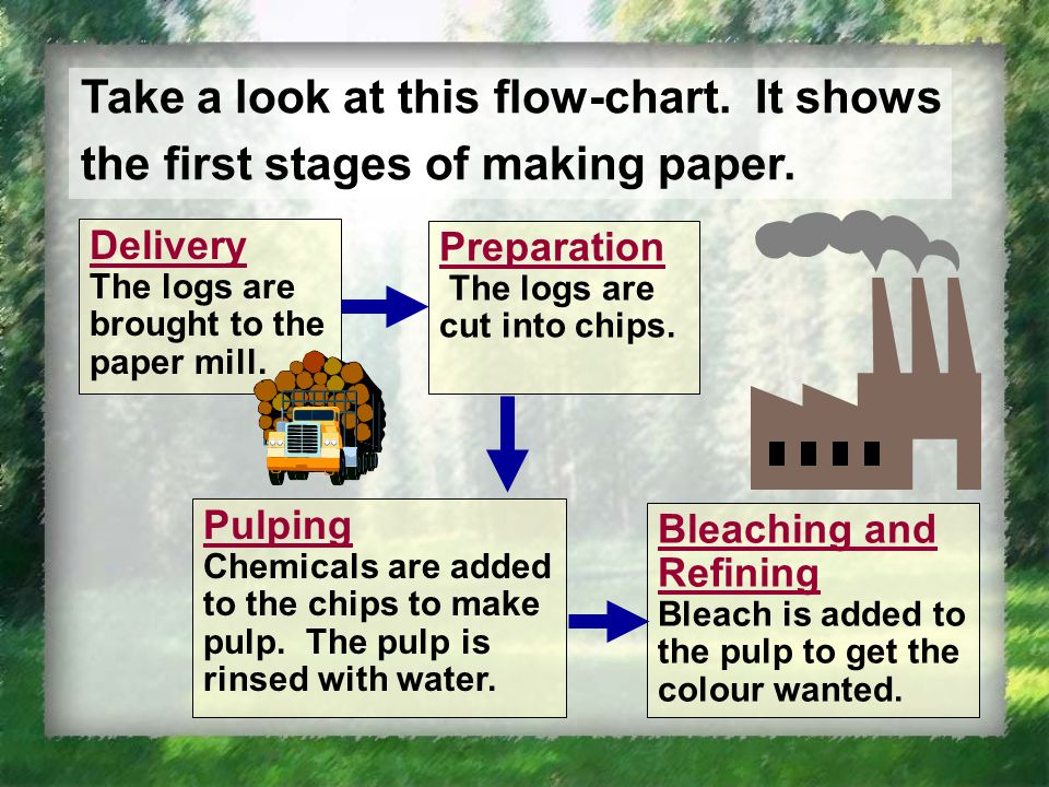 Take a look at this flow-chart. It shows the first stages of making paper.