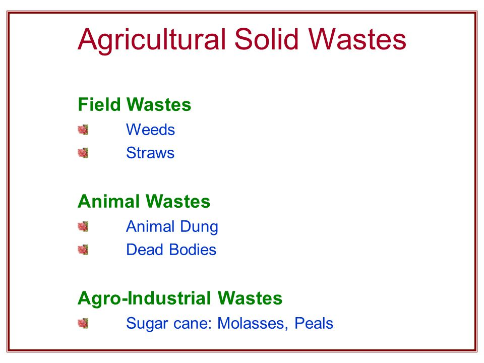 Agricultural Solid Wastes Field Wastes Weeds Straws Animal Wastes Animal Dung Dead Bodies Agro-Industrial Wastes Sugar cane: Molasses, Peals