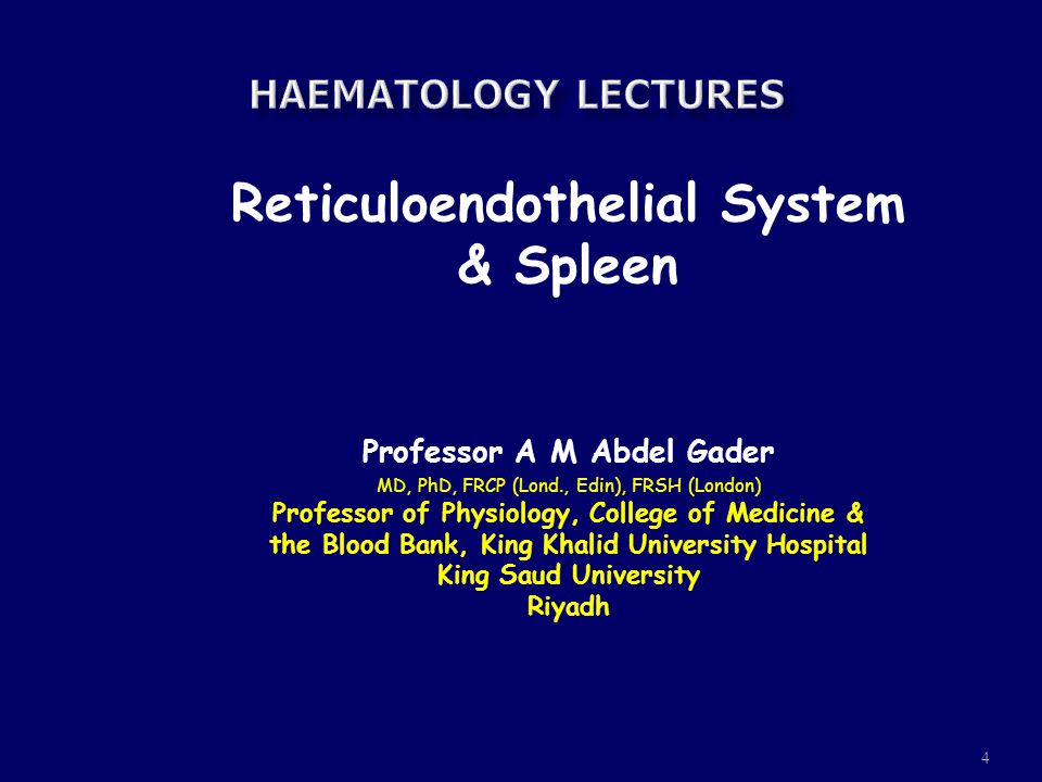 4 Reticuloendothelial System & Spleen Professor A M Abdel Gader MD, PhD, FRCP (Lond., Edin), FRSH (London) Professor of Physiology, College of Medicin