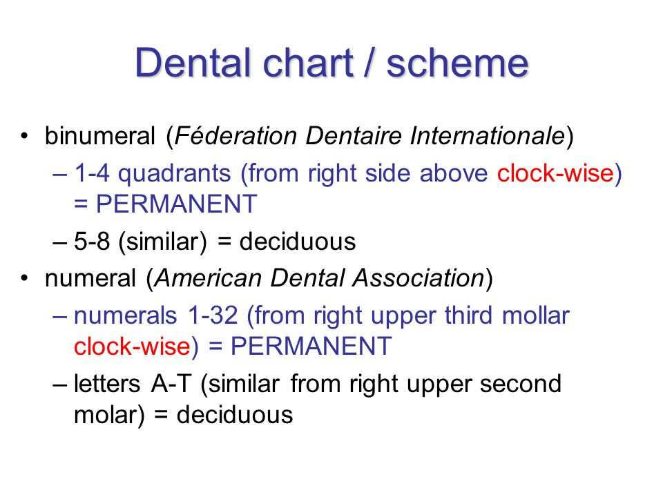 Dental chart / scheme binumeral (Féderation Dentaire Internationale) –1-4 quadrants (from right side above clock-wise) = PERMANENT –5-8 (similar) = deciduous numeral (American Dental Association) –numerals 1-32 (from right upper third mollar clock-wise) = PERMANENT –letters A-T (similar from right upper second molar) = deciduous