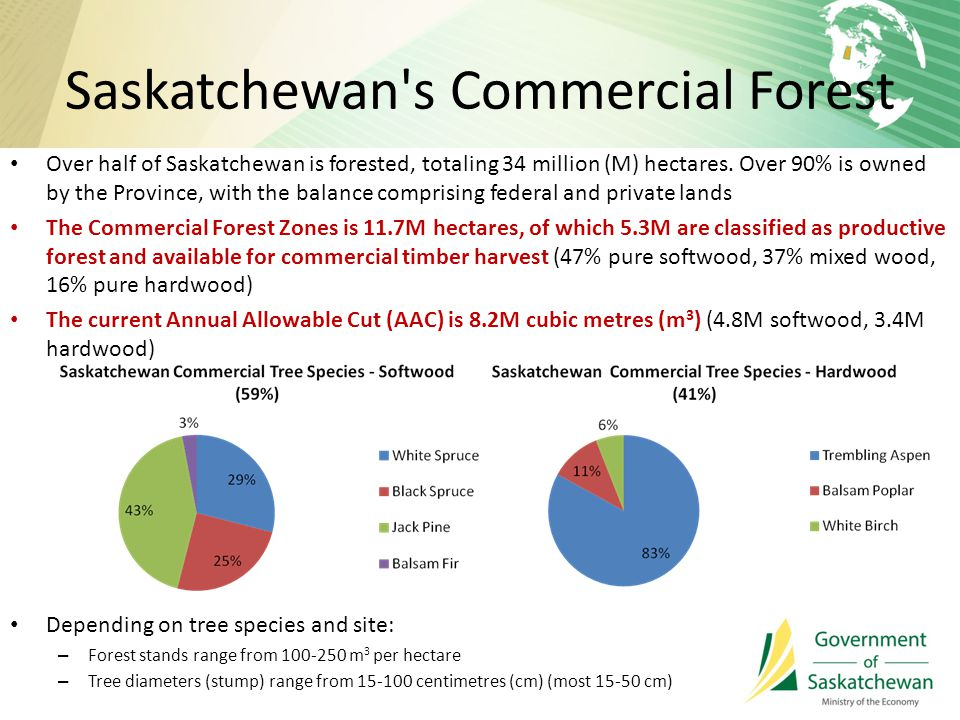 Saskatchewan s Commercial Forest Over half of Saskatchewan is forested, totaling 34 million (M) hectares.