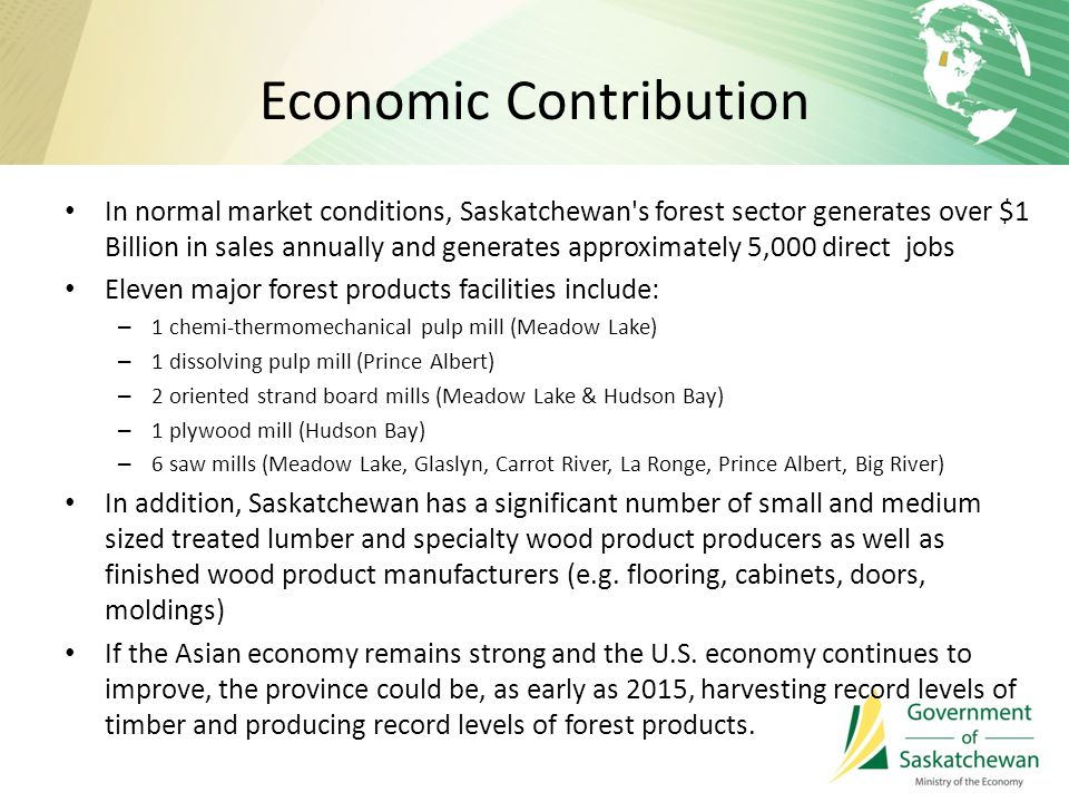 Economic Contribution In normal market conditions, Saskatchewan s forest sector generates over $1 Billion in sales annually and generates approximately 5,000 direct jobs Eleven major forest products facilities include: – 1 chemi-thermomechanical pulp mill (Meadow Lake) – 1 dissolving pulp mill (Prince Albert) – 2 oriented strand board mills (Meadow Lake & Hudson Bay) – 1 plywood mill (Hudson Bay) – 6 saw mills (Meadow Lake, Glaslyn, Carrot River, La Ronge, Prince Albert, Big River) In addition, Saskatchewan has a significant number of small and medium sized treated lumber and specialty wood product producers as well as finished wood product manufacturers (e.g.