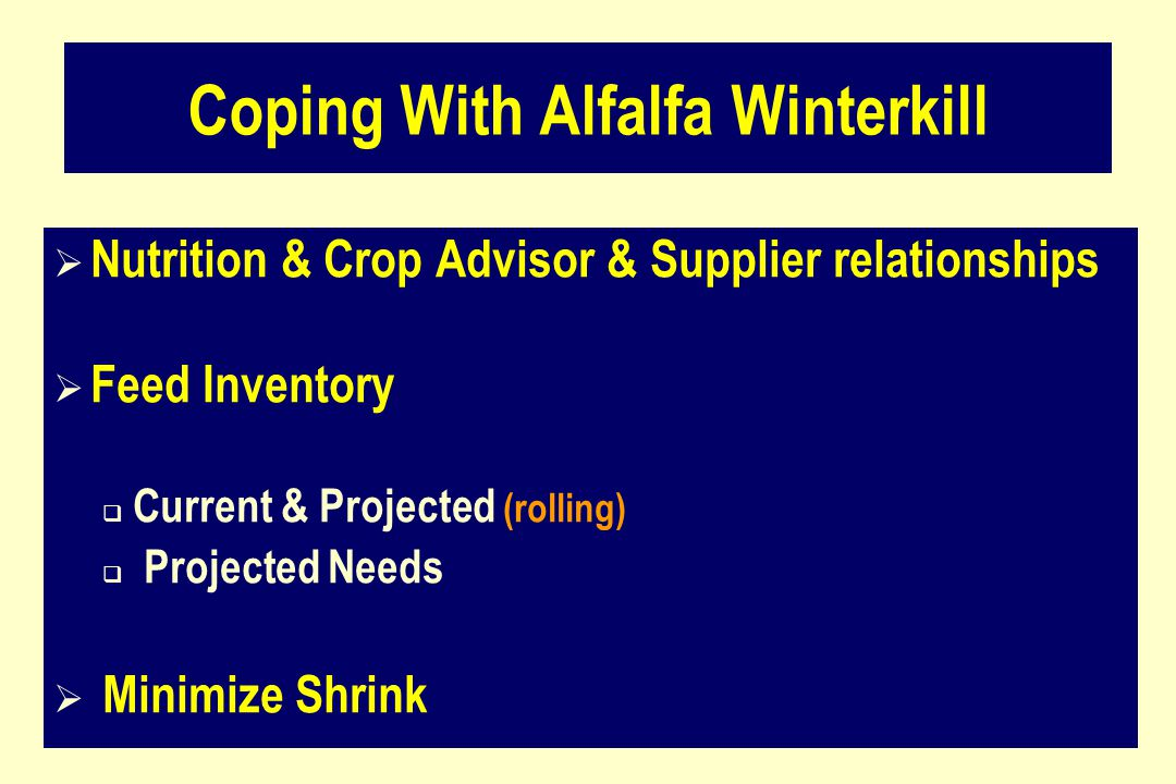 Coping With Alfalfa Winterkill  Nutrition & Crop Advisor & Supplier relationships  Feed Inventory  Current & Projected (rolling)  Projected Needs  Minimize Shrink