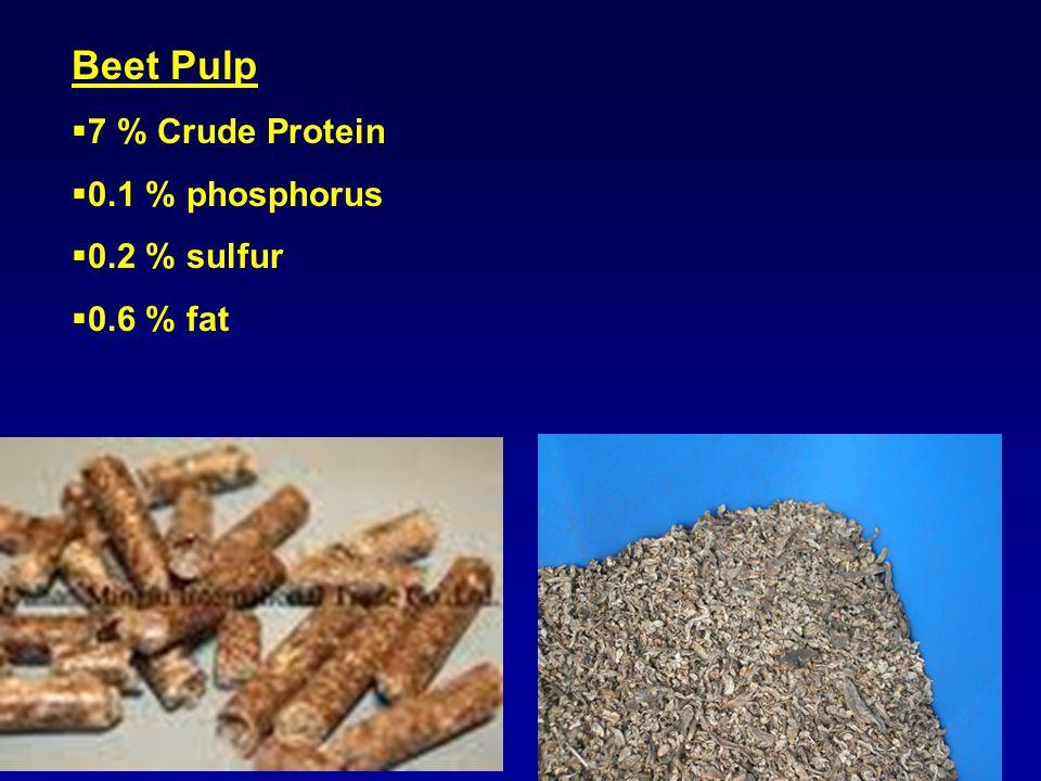 Beet Pulp  7 % Crude Protein  0.1 % phosphorus  0.2 % sulfur  0.6 % fat