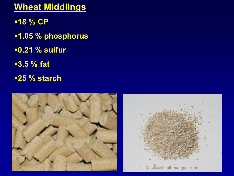 Wheat Middlings  18 % CP  1.05 % phosphorus  0.21 % sulfur  3.5 % fat  25 % starch