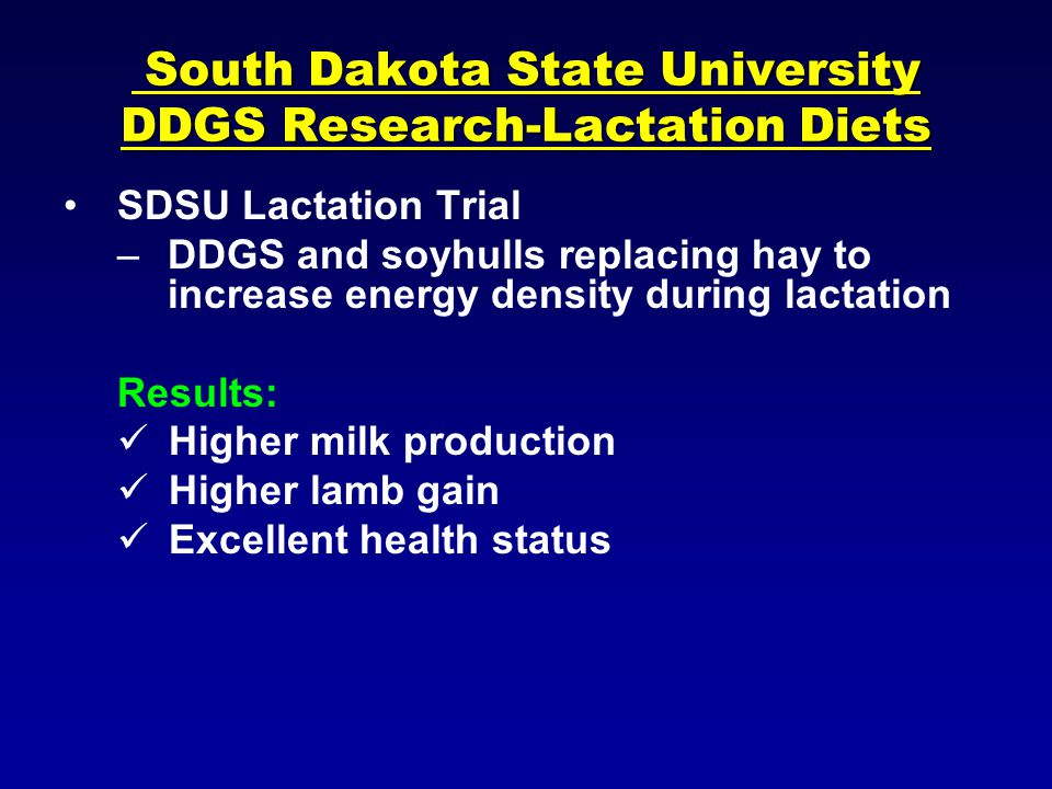 South Dakota State University DDGS Research-Lactation Diets South Dakota State University DDGS Research-Lactation Diets SDSU Lactation Trial –DDGS and soyhulls replacing hay to increase energy density during lactation Results: Higher milk production Higher lamb gain Excellent health status
