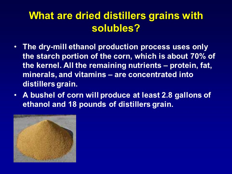 What are dried distillers grains with solubles.
