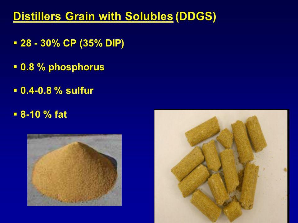 Distillers Grain with Solubles (DDGS)  28 - 30% CP (35% DIP)  0.8 % phosphorus  0.4-0.8 % sulfur  8-10 % fat