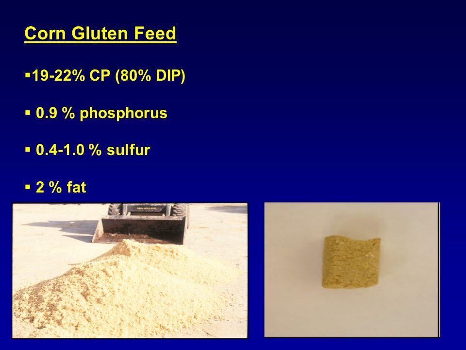 Corn Gluten Feed  19-22% CP (80% DIP)  0.9 % phosphorus  0.4-1.0 % sulfur  2 % fat