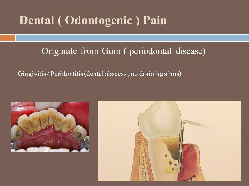 Dental ( Odontogenic ) Pain Originate from Gum ( periodontal disease) Gingivitis / Peridontitis (dental abscess, no draining sinus)