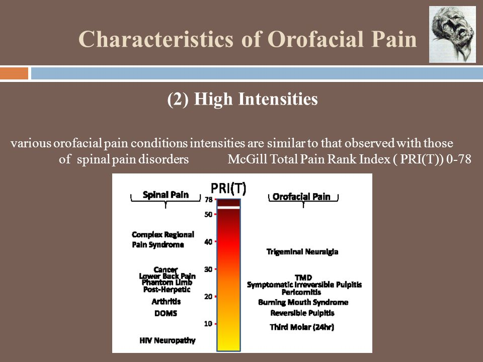 Characteristics of Orofacial Pain (2) High Intensities various orofacial pain conditions intensities are similar to that observed with those of spinal pain disorders McGill Total Pain Rank Index ( PRI(T)) 0-78