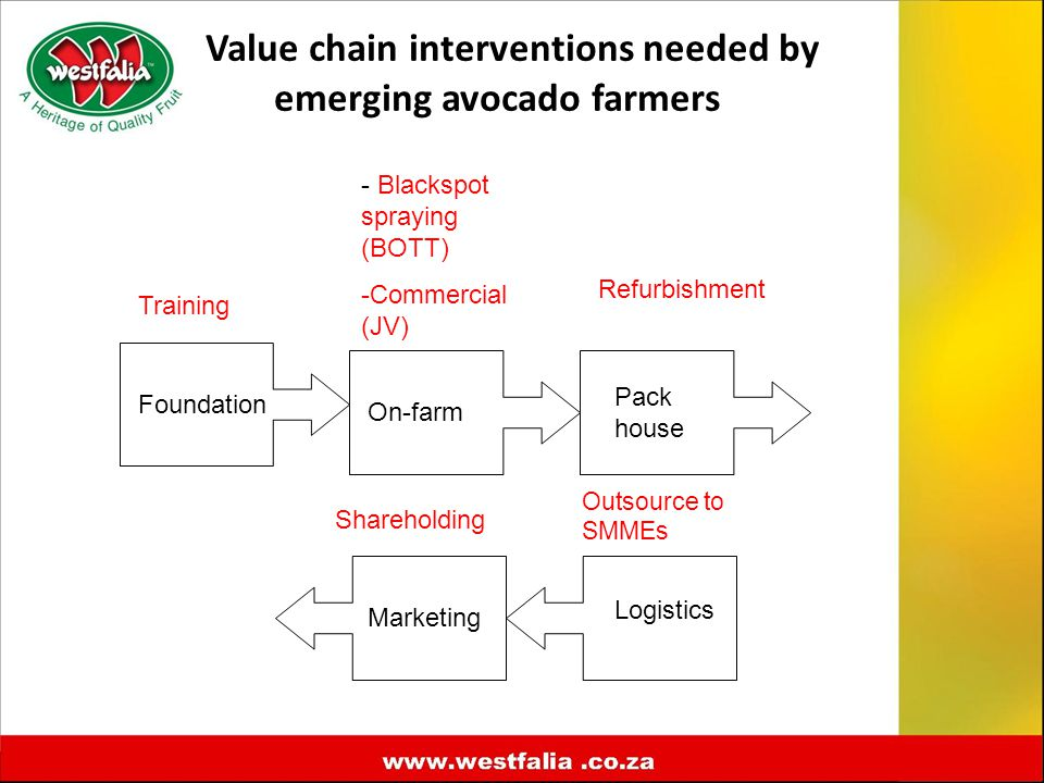 Value chain interventions needed by emerging avocado farmers Foundation Marketing Logistics Pack house On-farm Training - Blackspot spraying (BOTT) -Commercial (JV) Refurbishment Outsource to SMMEs Shareholding