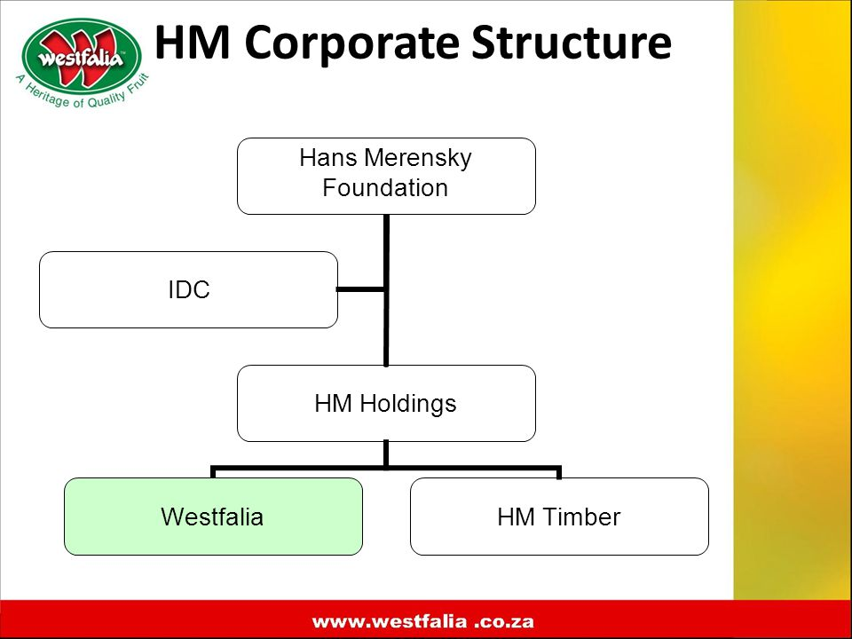 HM Corporate Structure Hans Merensky Foundation HM Holdings WestfaliaHM Timber IDC