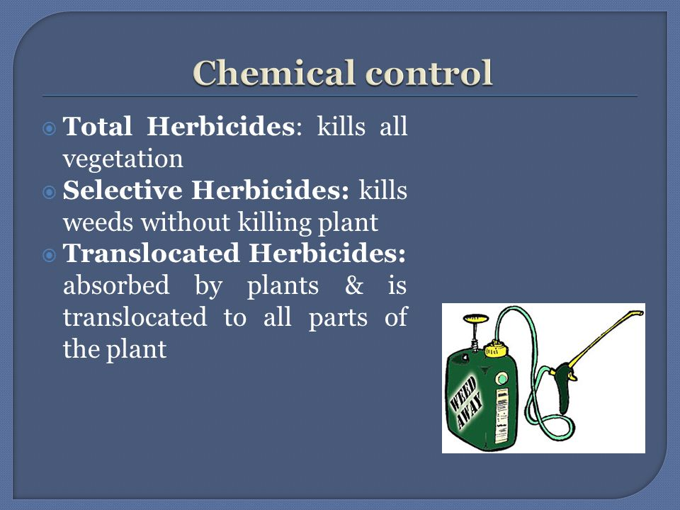  Total Herbicides: kills all vegetation  Selective Herbicides: kills weeds without killing plant  Translocated Herbicides: absorbed by plants & is translocated to all parts of the plant