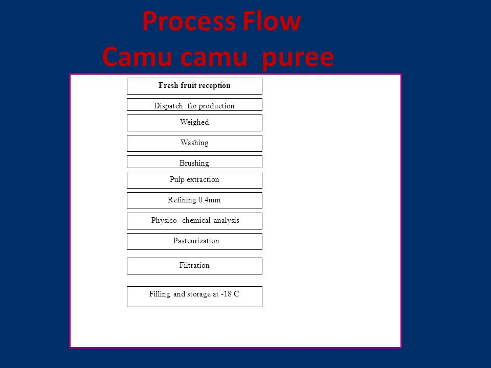 Process Flow Camu camu puree Fresh fruit reception Dispatch for production Weighed Washing Brushing Pulp extraction Refining 0.4mm Physico- chemical analysis.
