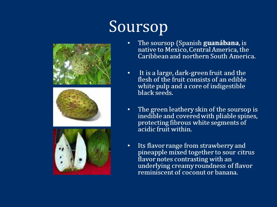 Soursop The soursop (Spanish guanábana, is native to Mexico, Central America, the Caribbean and northern South America.