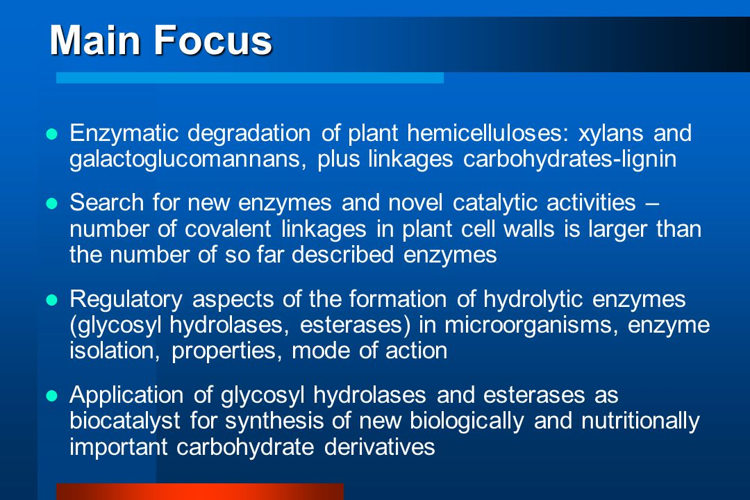 Main Focus Enzymatic degradation of plant hemicelluloses: xylans and galactoglucomannans, plus linkages carbohydrates-lignin Search for new enzymes an