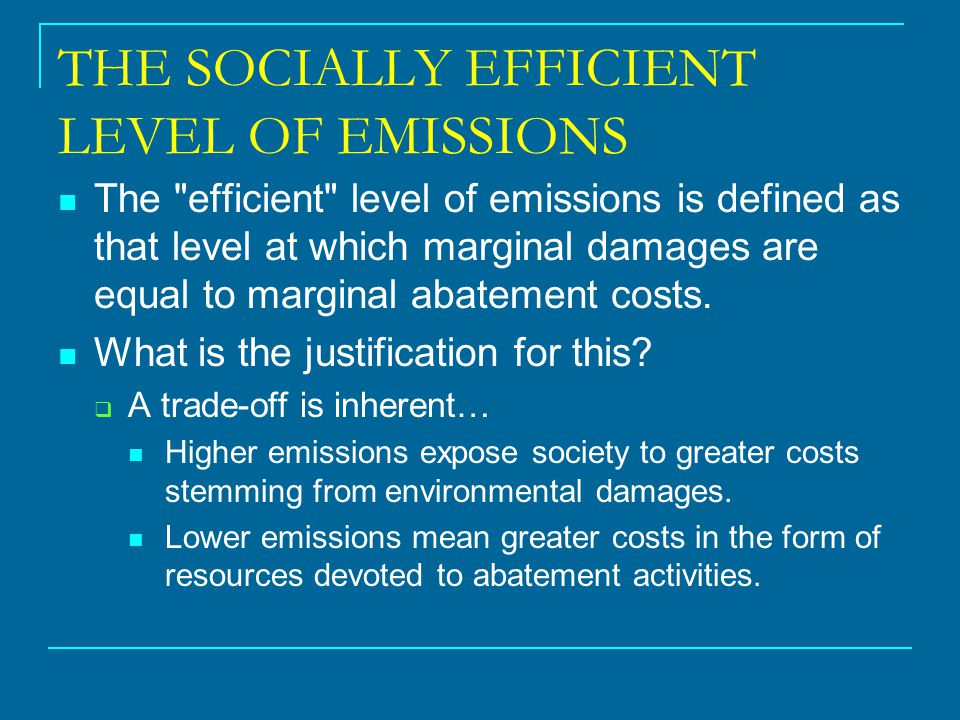 THE SOCIALLY EFFICIENT LEVEL OF EMISSIONS The
