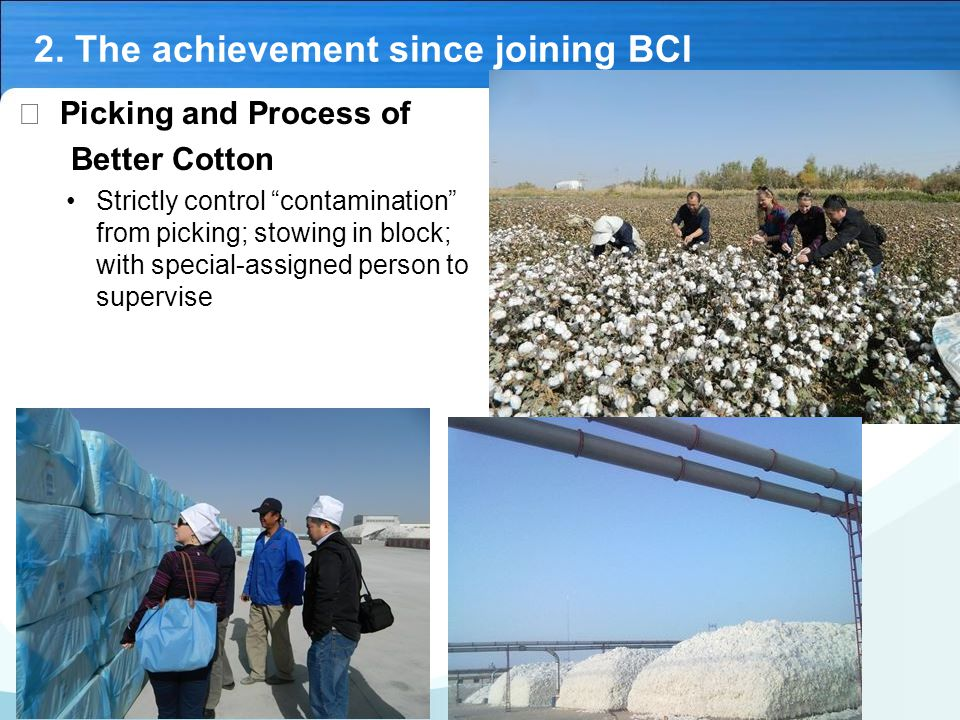 """2. The achievement since joining BCI Ⅴ Picking and Process of Better Cotton Strictly control """"contamination"""" from picking; stowing in block; with spec"""