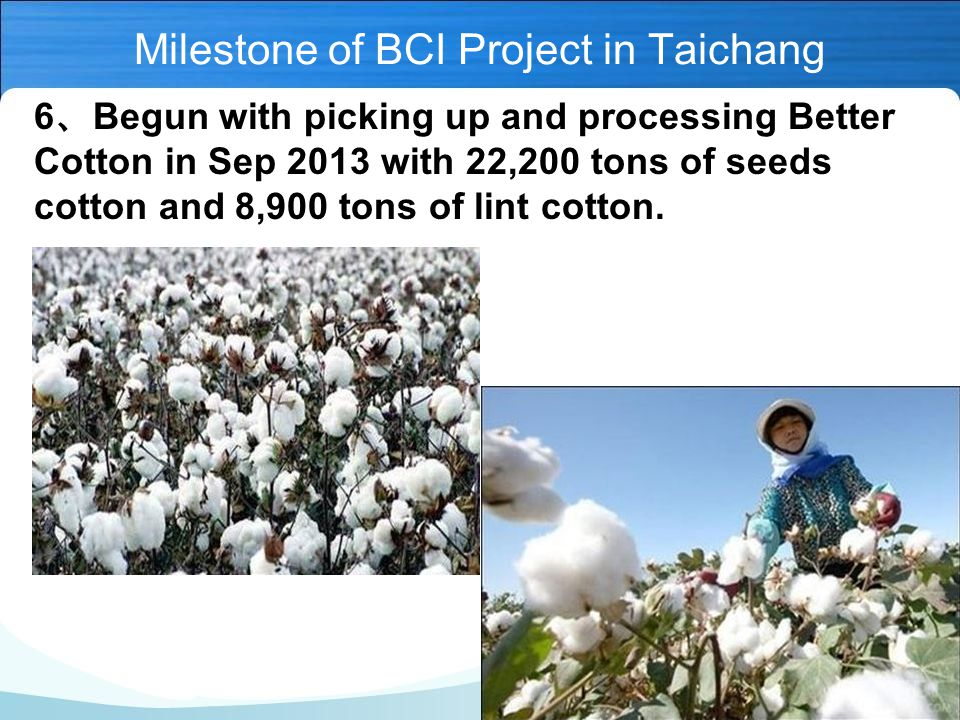 6 、 Begun with picking up and processing Better Cotton in Sep 2013 with 22,200 tons of seeds cotton and 8,900 tons of lint cotton.