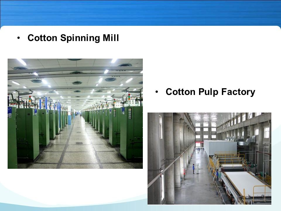 Cotton Spinning Mill Cotton Pulp Factory