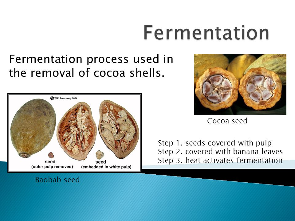 Fermentation process used in the removal of cocoa shells.