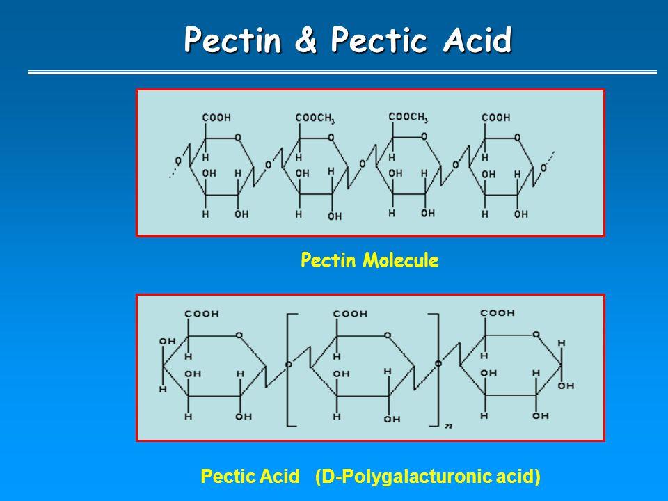 Pectin & Pectic Acid Pectic Acid (D-Polygalacturonic acid) Pectin Molecule