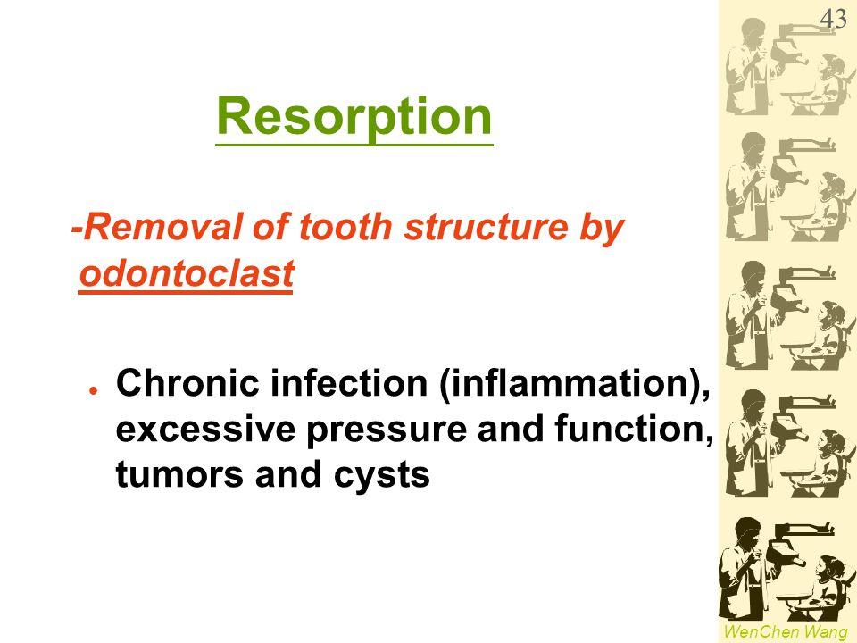WenChen Wang Resorption -Removal of tooth structure by odontoclast Chronic infection (inflammation), excessive pressure and function, tumors and cysts